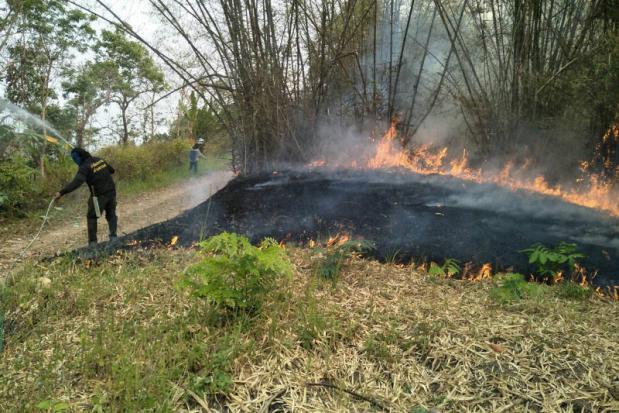 The burden of the blazes | Bangkok Post: news