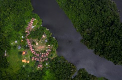 Isolation helps Brazil indigenous group defend way of life | Bangkok Post: news