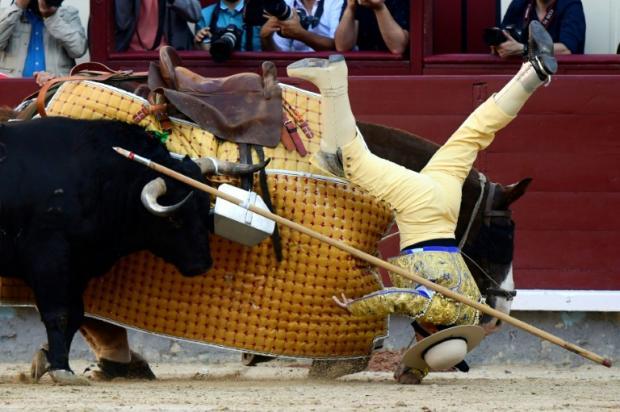 Madrid's bullfighting 'ritual' acclaimed and contested | Bangkok Post: news