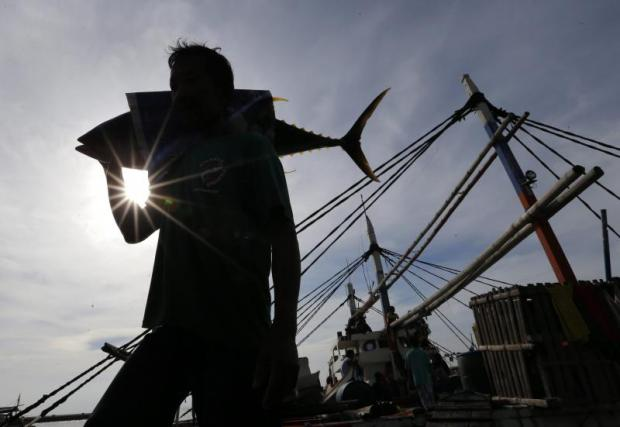Global plan aims to reel in over-fishing