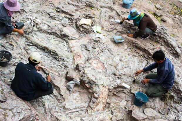 The dinosaur hunter seeking more than just bare bones