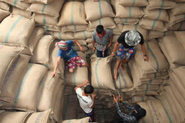 rice crisis essay Rice crisis forensics: how asian governments carelessly set the world rice market on fire center for global development in europe.