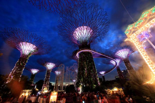 Christmas lights and festive delights in Singapore