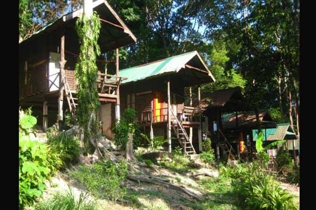 Jungle Bar Bungalow Is Located On Phangan Island In Surat Thani Ban Tai Beach This Small Front Property Offers 5 Bungalows Various Styles