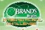 Brand's Brain International Challenge 2013