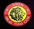 Lion Muay Thai Gym