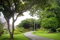 Seri Thai Park (Bueng Kum Park)