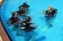 Samui Asia Divers & Tour