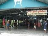Suwit Muay Thai Training Camp & Gym